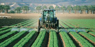 Pericolo pesticidi i soggetti più a rischio sono i bambini