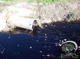 Lizzano - Acqua contaminata?