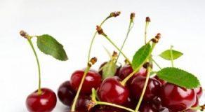 La ciliegia: il frutto dell'estate