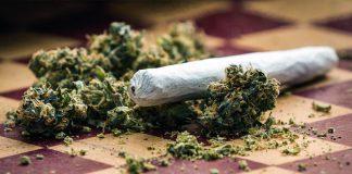 Boom aperture negozi di Cannabis in Italia