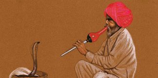 Incantatori di cobra: Quando l'arte diventa vitale