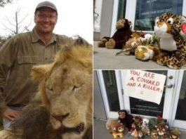 Il leone Cecil: risveglio della coscienza popolare o caso mediatico?