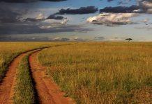 Rapimento di Silvia Romano riprende il processo in Kenya