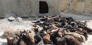 Parlano tedesco i gas nervini usati a Damasco