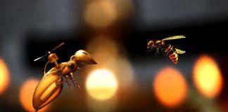 Robotica: sciami di piccoli droni aiuteranno ad esplora ambienti impenetrabili