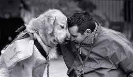 Rapporto ASSALCO-ZOOMARK 2014: l'Italia ama gli animali