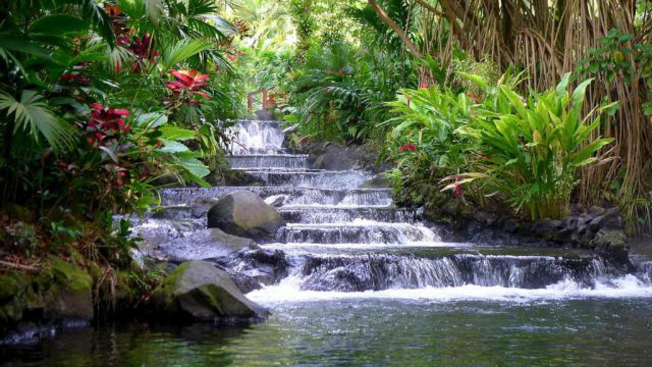 Trovare Lavoro In Costa Rica costa rica: paradiso in cui fuggire o semplice illusione? 2a