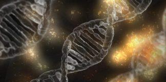 Prime editing: una nuova tecnica al servizio dell'ingegneria genetica