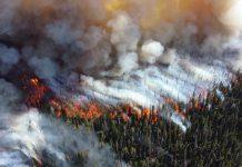 L'Artico sta bruciando e la colpa è del riscaldamento globale