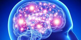 Gli alimenti che aiutano la memoria? Sono sette