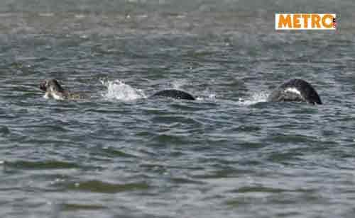 Fotografato il mostro di Loch Ness