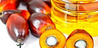 L'olio di palma fa male? Ecco la risposta dell'Istituto Superiore di Sanità