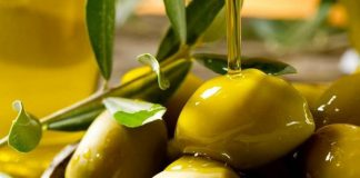 Olixfit: il network marketing che usa il polifenolo dell'ulivo