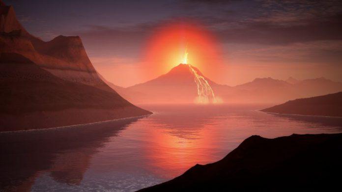 Scoperte le tracce della sesta estinzione di massa