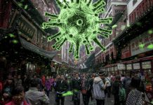Coronavirus: 13 giorni di ritardato intervento in Cina