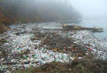 Mare inquinato sud