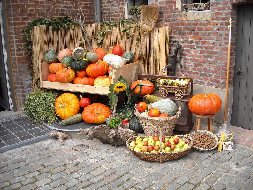 Frutta e verdura autunnale: sfrutta questi ingredienti per tornare in forma